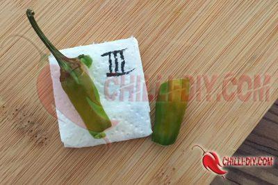Chilisorte 3, Jalapeno Eigenextrakt Bild