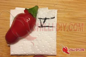 Chilisorte 5 Eigenextrakt Bild