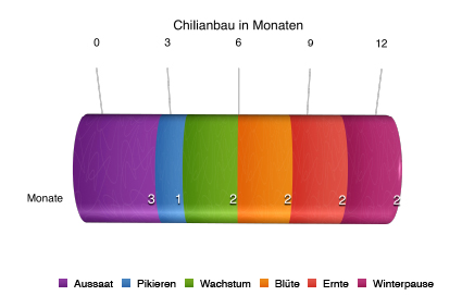 Infografik zum Chilianbau