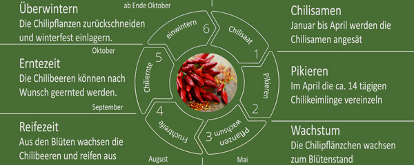 Chilikreis-Inforgrafik