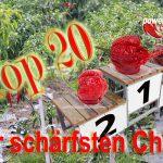 Die Top 20❗️ schärfsten Chilis der Welt ♨️